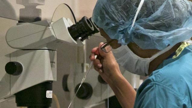 Une femme transfère un échantillon devant un microscope dans un laboratoire.