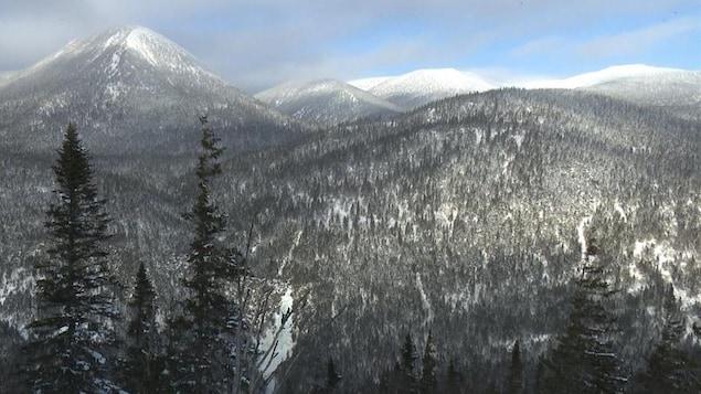 Les monts Chic-Chocs, en Gaspésie.