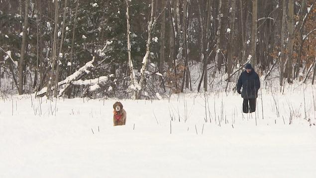 Un homme promène son chien sans laisse.