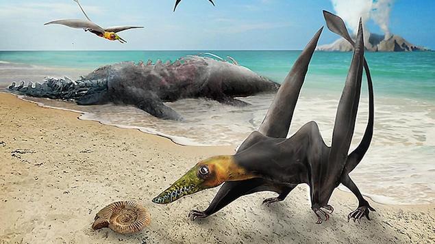 Illustration artistique d'un ptérosaure sur une plage.