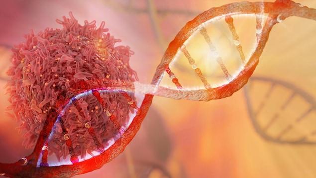 Tous les cancers sont causés par un changement permanent ou une lésion qui est survenu dans un ou plusieurs gènes.