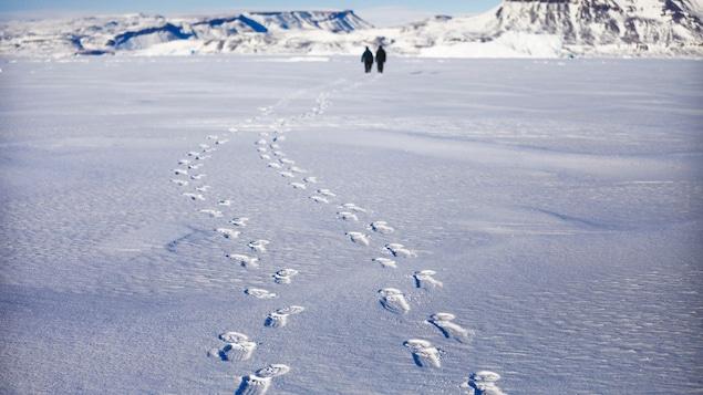 Une image montre des traces de pas dans la neige sur l'île d'Ellesmere dans l'Arctique canadien.