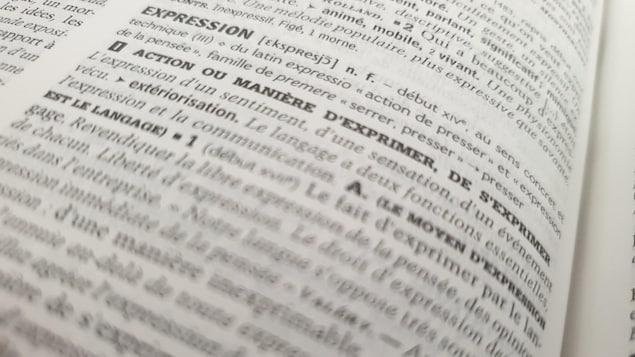 Page du dictionnaire sur le mot expression.