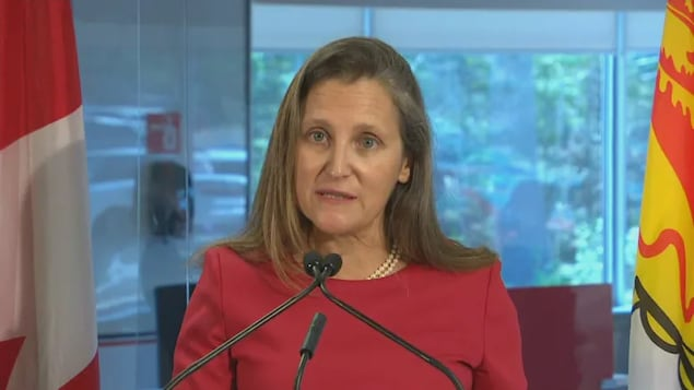 Deputy Prime Minister Chrystia Freeland announced that the government will be extending a number of economic support programs related to the COVID-19 pandemic.