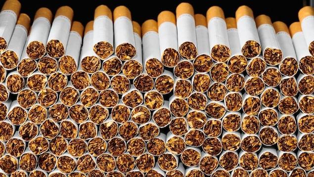 Des dizaines de cigarettes empilées les unes sur les autres