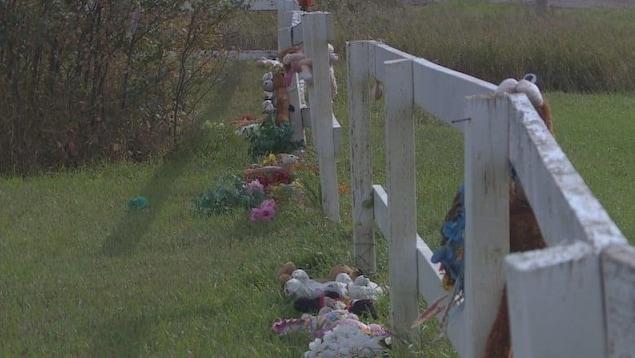Des jouets en peluche accrochés à une clôture en bois.