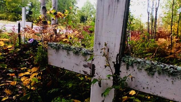 Des croix dans un cimetière de la réserve de Grassy Narrows, dans le Nord-Ouest de l'Ontario
