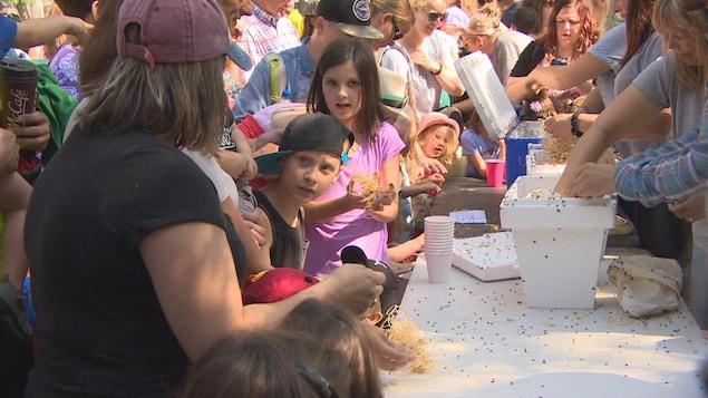 Enfants et adultes sont attroupés devant la table sur laquelle sont posées les boîtes qui contiennent les coccinnelles.