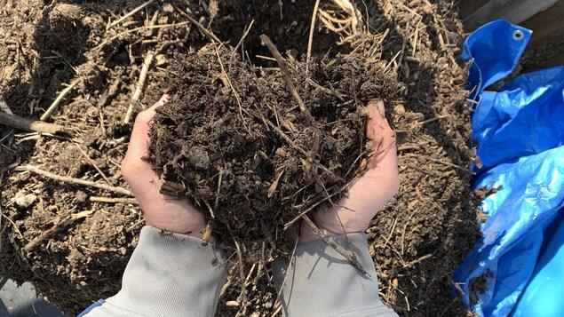 Un homme tient dans sa main du compost.