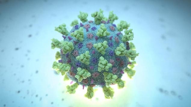 Une image de synthèse créée par Nexu Science Communication et le Trinity College de Dublin montrant un betacoronavirus comme celui causant la COVID-19.