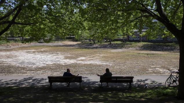 Deux personnes sont assises chacune sur un banc de parc, à l'ombre.