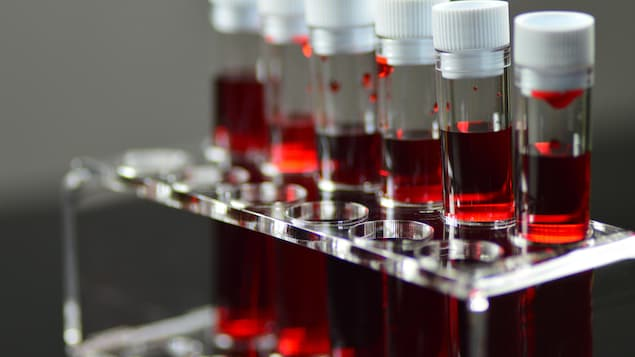 Éprouvettes utilisées à des fins de tests sanguins en laboratoire.