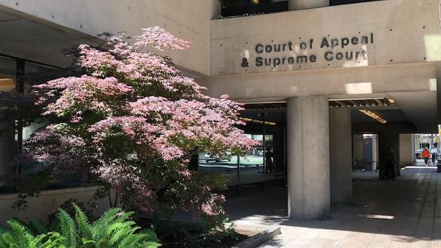 Un bâtiment de béton, au soleil, avec écrit dessus : Court of Appeal et Supreme Court.