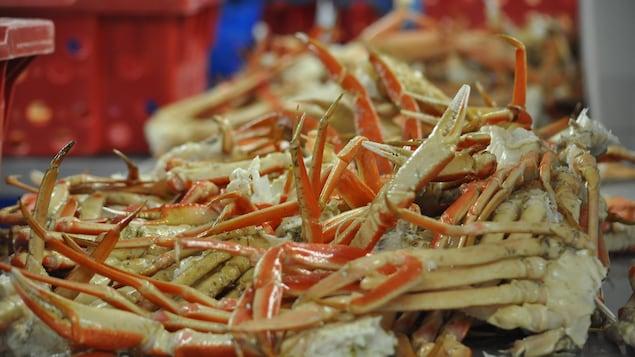 Des pinces de crabe reposent dans une usine de transformation.