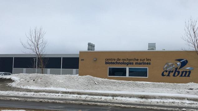L'immeuble du CRBM, vu de l'autre côté de la rue, en hiver.