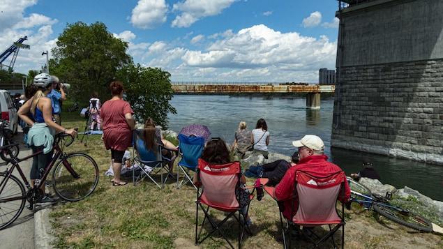 Une dizaine de personnes sont installées sur la rive pour observer la baleine.