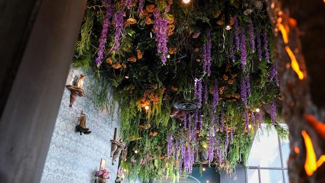 Des plantes tombantes typiques de l'Asie au printemps recouvrent le plafond du Jardin.