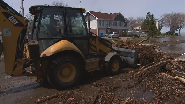 Tracteur ramassant débris de bois