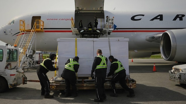 4 hommes de dos font descendre la boite de l'avion