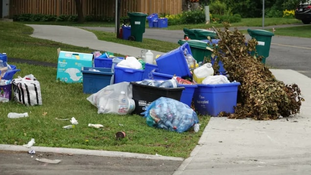 Des poubelles de recyclage en attente d'être ramassées à Ottawa.