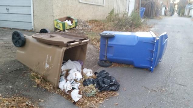 Des poubelles renversées dans les allées de Regina