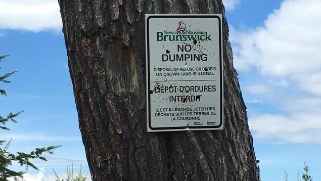 Une affiche gouvernementale sur un arbre indiquant que le dépôt d'ordures est interdit.
