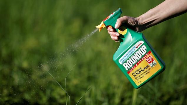 Une bouteille de désherbant Roundup de Monsanto.