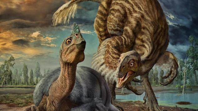 Une reproduction du Beibeilong Sinensis, une nouvelle espèce de dinosaure identifiée