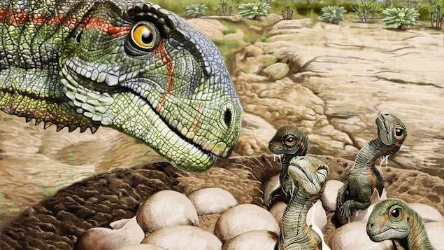 Illustration montrant un Mussaurus patagonicus adulte protégeant des bébés et des œufs.