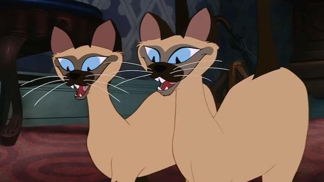 Deux chats siamois en dessins animés.