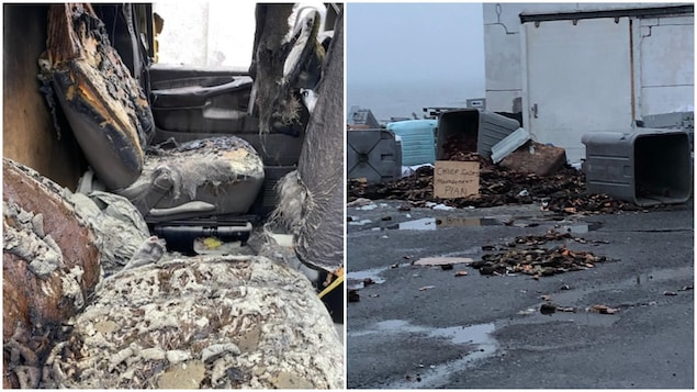 L'intérieur d'une voiture brûlée et des dizaines de homards sur l'asphalte.