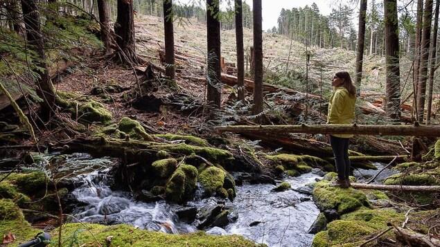 Une femme se tient au coeur d'un secteur boisé de l'île de Vancouver.