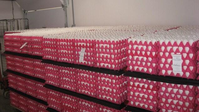 Des centaines d'oeufs en attente d'être transportés vers les épiceries