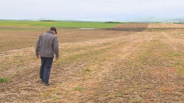 Yannick Côté, propriétaire de la ferme Soya, aimerait installer des drains agricoles dans ses champs.