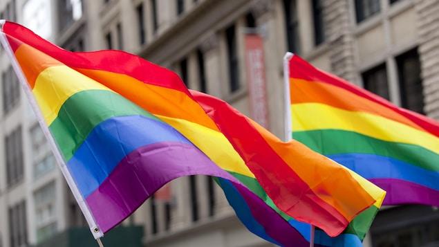 Des drapeaux de la fierté gaie.