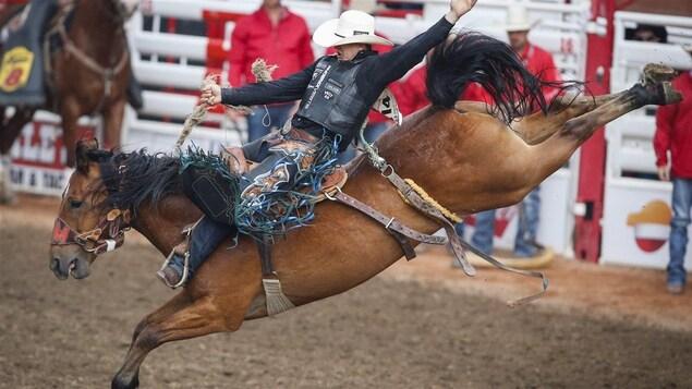 Un homme fait du rodéo sur un cheval.