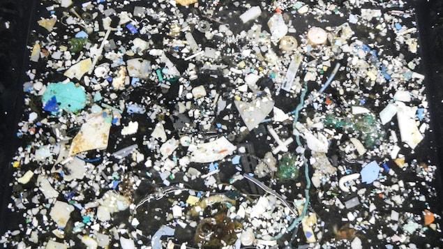 Une multitude de petits morceaux de plastique.