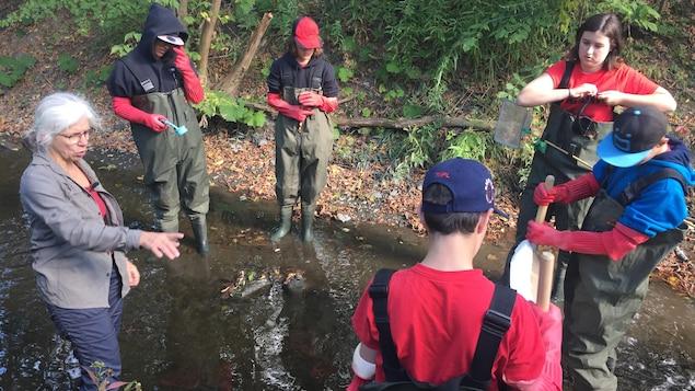 Aujourd'hui, ces élèves de 2e secondaire font l'inventaire des macro-invertébrés et l'analyse physicochimique du ruisseau Massé, en Montérégie.
