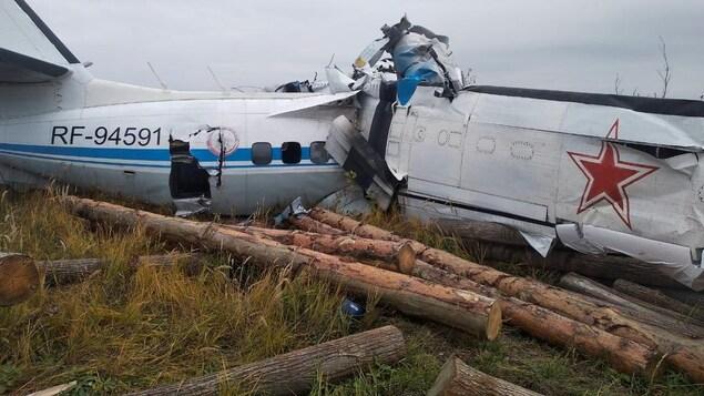 L'épave de l'avion est au sol, à travers des bûches de bois.