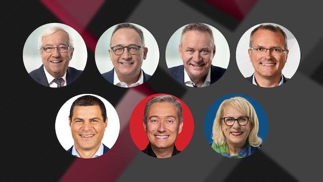 Les visages de Louis Plamondon, Yves Perron, Martin Champoux, Luc Berthold, Alain Rayes, François-Philippe Champagne et Louise Charbonneau.