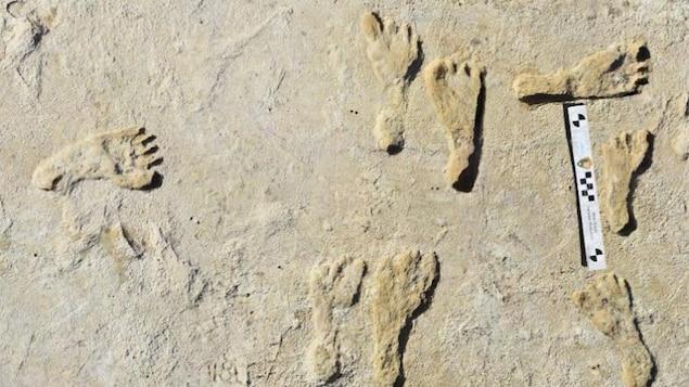 Des empreintes humaines qui se sont formées dans de la boue molle.
