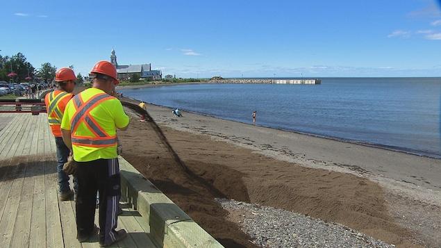 Des travailleurs font des travaux d'ensablement, pendant que des baigneurs profitent de la plage.