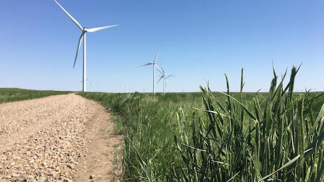 Des éoliennes dans le parc Blackspring Ridge, dans le sud de l'Alberta. Enbridge détient 50 % du parc.