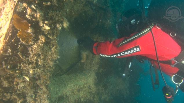 Les membres d'une équipe d'archéologues de l'agence Parcs Canada ont exploré pour la première fois l'intérieur du navire HMS Terror.
