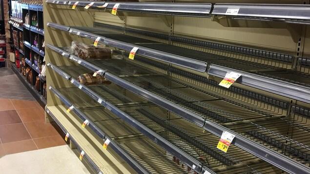 Des étagères vides dans une allée d'épicerie.