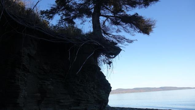 Érosion à la plage Haldimand de Gaspé
