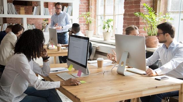 Des employés travaillent devant leur ordinateur.