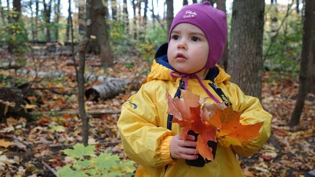 Une petite fille de deux ans est vêtue d'un imperméable jaune et tient dans ses mains des feuilles d'érable colorées.