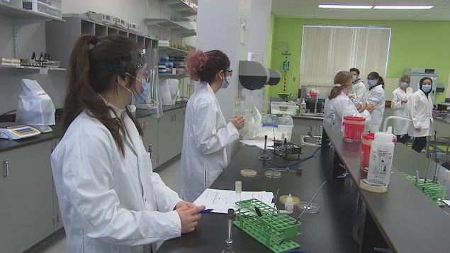 Des étudiantes participent à un cours donné dans un laboratoire.