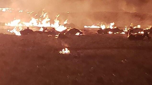 Une étendue d'herbe est ravagée par les flammes. Des gens se trouvent sur le sol.